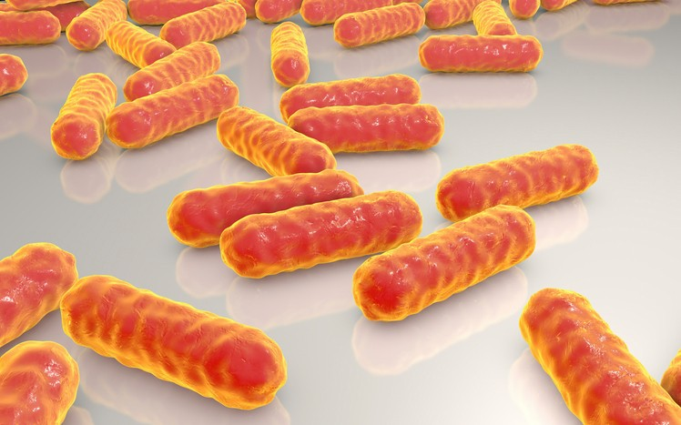 AbSci hopes to make E. Coli great again through engineered expression system